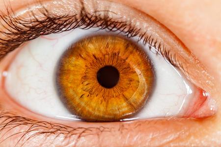 Foto de Photo Human eye close-up. - Imagen libre de derechos