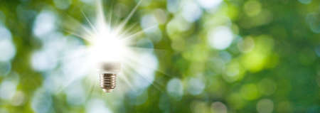 Foto de light bulb on green background close-up - Imagen libre de derechos