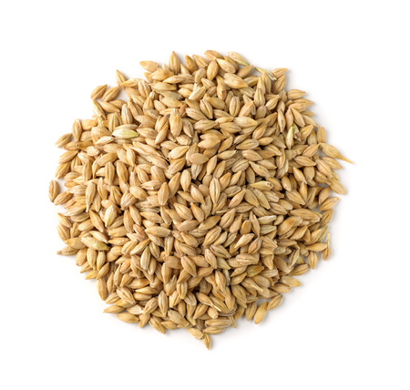 Photo for Top view of barley grains isolated on white - Royalty Free Image