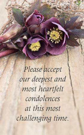 Photo pour condolence card  with dark christroses - image libre de droit