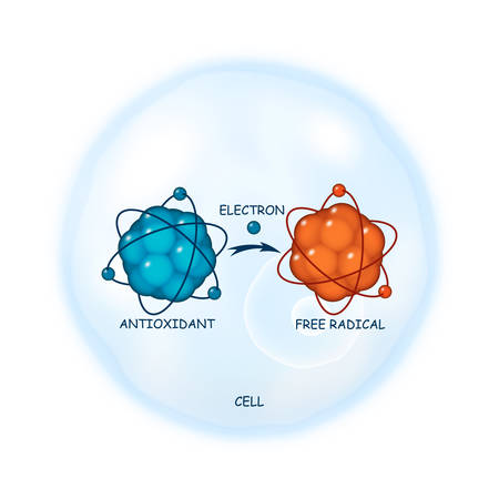 Illustrazione per Antioxidant working principle abstract illustration - Immagini Royalty Free