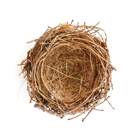 Photo pour Isolated Bird Nest On white - image libre de droit