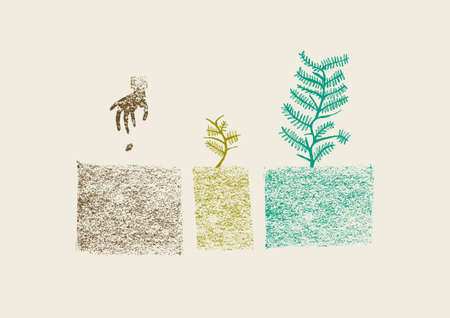 Illustration pour Tree Growing Process in three steps  Color full hand drawn illustration  - image libre de droit