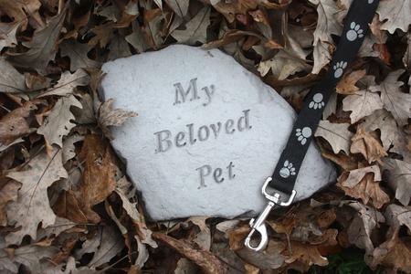 Foto de Loss of a Pet Memorial in Fall Leaves - Imagen libre de derechos