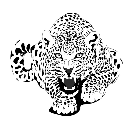 Photo pour Leopard in black interpretation - image libre de droit