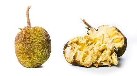 Foto de Whole jackfruit isolated on white background. Tropical fruit - Imagen libre de derechos