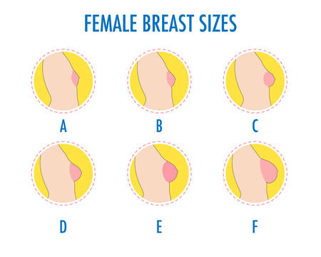 Illustrazione per Set of round line icons of different female breast size, body side view. Various boobs sizes, from small to large. Sizes of busts, from A to F. Vector isolated on white. - Immagini Royalty Free