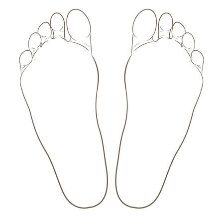Ilustración de Left and right foot soles contour illustration for biomechanics, footwear, shoe concepts, medical, health, massage, spa, acupuncture centers. Realistic cartoon style contour. Vector isolated on white. - Imagen libre de derechos