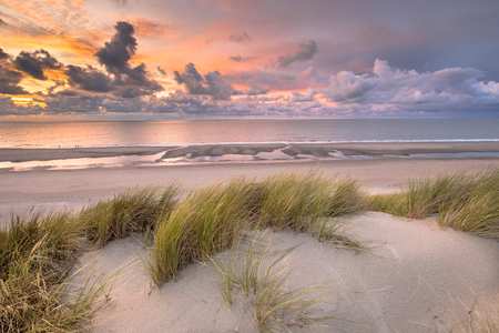 Photo for Sunset View from dune top over North Sea and Canal in Zeeland, Netherlands - Royalty Free Image