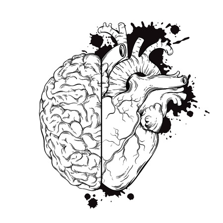 Ilustración de Hand drawn line art human brain and heart halfs. Grunge sketch tattoo design isolated on white background vector illustration. Logic and emotion priority concept. - Imagen libre de derechos