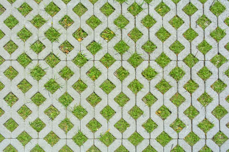 Foto de Geometric background of eco floor bricks and green grass. Eco parking texture. Floor stone tile with a rhomb hole for grass. Eco-friendly parking of concrete cells and turf grass - Imagen libre de derechos