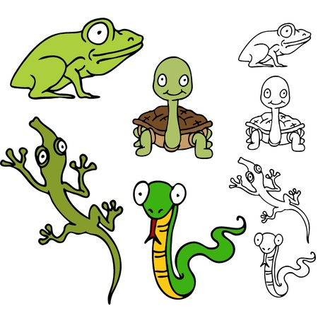 An image of a reptile frog set with, turtle, lizard and snake.