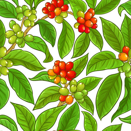 Illustration for coffee vector pattern on whte background - Royalty Free Image