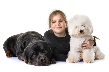 young girl and dogs in front of white background