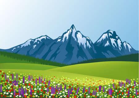 nature summer background
