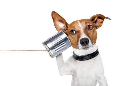 Foto de dog on the phone with  a can - Imagen libre de derechos