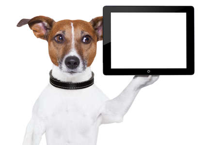 dog holding a  blank tablet pc on paw