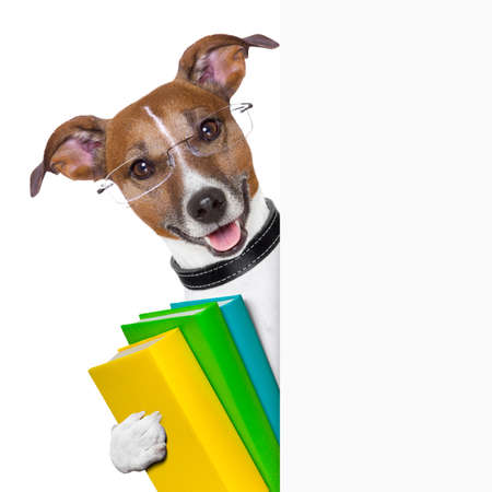 Photo pour school dog with books and banner - image libre de droit