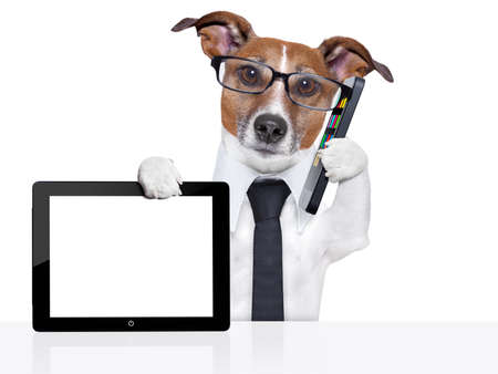 Photo pour business dog with a tie , glasses ,tablet pc and smartphone - image libre de droit