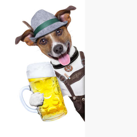 Foto de oktoberfest dog with  a beer mug ,smiling happy behing a placard - Imagen libre de derechos