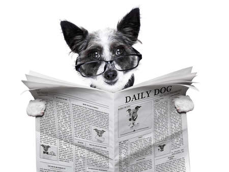 Photo for dog reading and holding a blank newspaper - Royalty Free Image