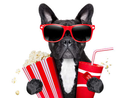 Photo for dog going to the movies with soda and glasses - Royalty Free Image