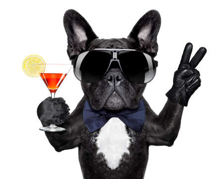 Photo for dog with martini cocktail and victory or peace fingers - Royalty Free Image