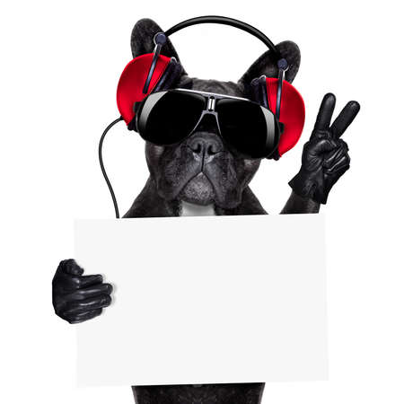 Foto de cool dj dog listening to music holding a white and blank banner or placard with peace or victory fingers - Imagen libre de derechos