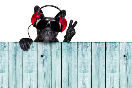 dj dog listening to music behind an empty and blank wood wall with victory and peace fingers