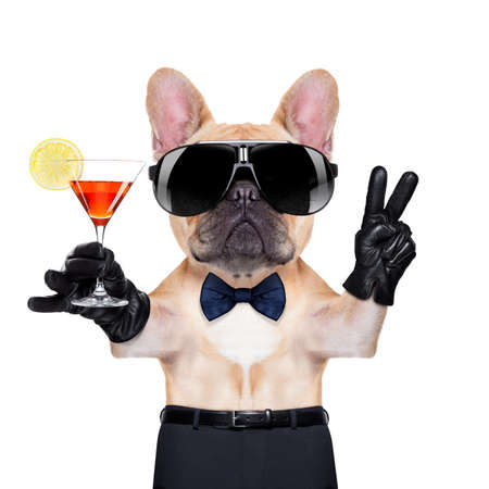 Photo for french bulldog holding a  glass of red martini  with peace or victory fingers , ready to toast,  isolated on white background - Royalty Free Image