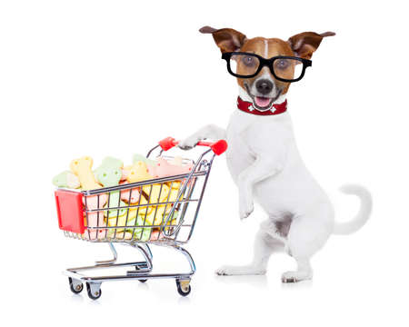 Photo for jack russell dog  pushing a shopping cart full of tasty treats  and cookies , isolated on white background - Royalty Free Image