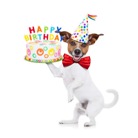 Photo pour jack russell dog holding a happy birthday cake with candels , red tie and party hat on , isolated on white background - image libre de droit