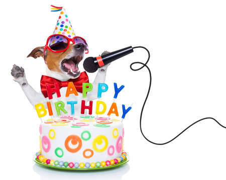 Foto de jack russell dog  as a surprise, singing birthday song  like karaoke with microphone ,behind funny cake,  wearing  red tie and party hat  , isolated on white background - Imagen libre de derechos