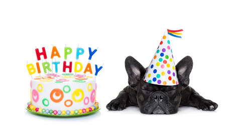 Photo for french bulldog with  happy birthday cake and candles ,a  party hat  ,eyes closed , isolated on white background - Royalty Free Image