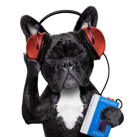 Photo pour french bulldog dog  listening to oldies with headphones  - image libre de droit