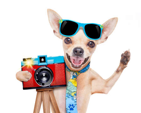 Foto de cool tourist photographer dog taking a snapshot or picture with a retro old camera gesturing to say cheese  - Imagen libre de derechos