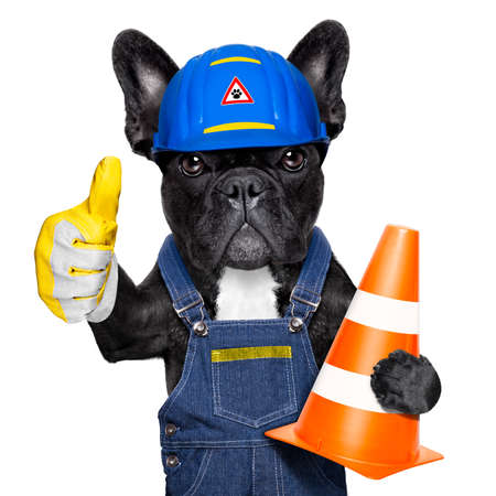 Photo pour worker  dog with helmet  with thumb up  ,work in progress, traffic cone in arm , isolated on white background - image libre de droit
