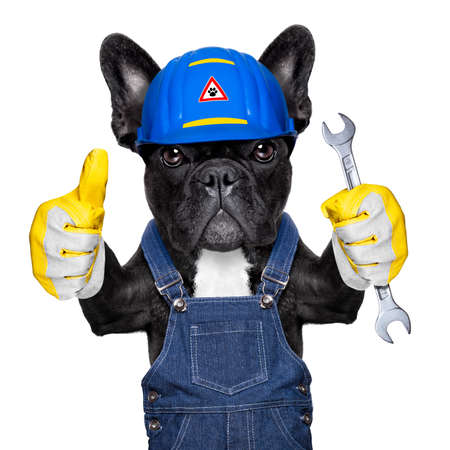 Photo for handyman dog worker with helmet and wrench in hand, ready to repair, fix everything at home, isolated on white background - Royalty Free Image