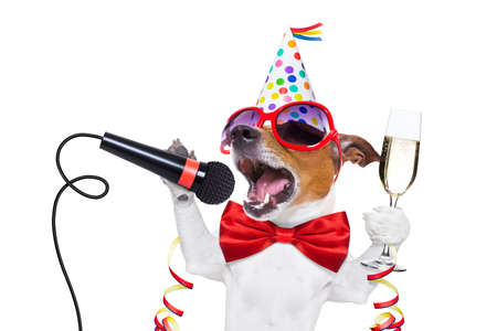 Photo for jack russell dog celebrating new years eve with champagne and singing karaoke with a microphone, isolated on white background - Royalty Free Image