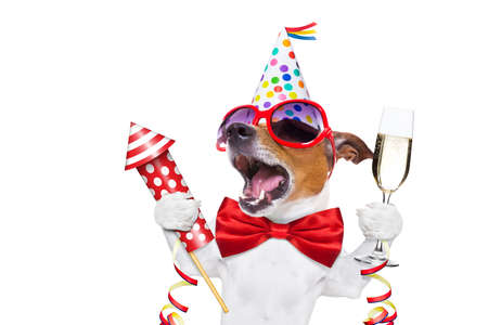 jack russell dog celebrating new years eve with champagne and singing out loud, with a fireworks rocket , isolated on white background