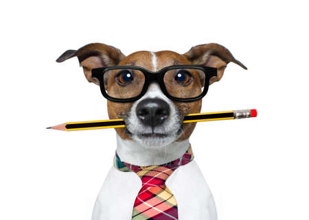 Photo pour jack russell dog with pencil or pen in mouth  wearing nerd glasses for work as a boss or secretary , isolated on white background - image libre de droit