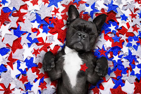 Photo pour french bulldog waving a flag of usa and victory or peace fingers on independence day 4th of july - image libre de droit