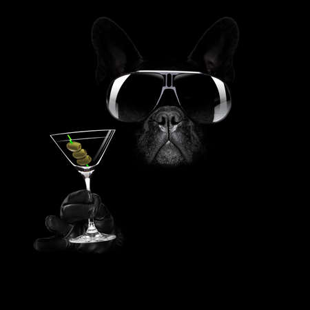 Foto de french bulldog in dark black  isolated background ,with martini cocktail drink  celebrating and toasting, looking cool - Imagen libre de derechos