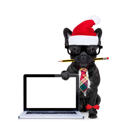 Foto de office businessman french bulldog dog with pen or pencil in mouth behind a  blank pc computer laptop screen , isolated on white background, on christmas holidays vacation with santa claus hat - Imagen libre de derechos