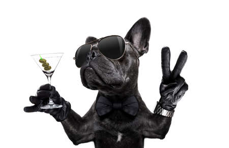 Photo pour french bulldog dog with martini cocktail and victory or peace fingers wearing a retro wrist watch - image libre de droit