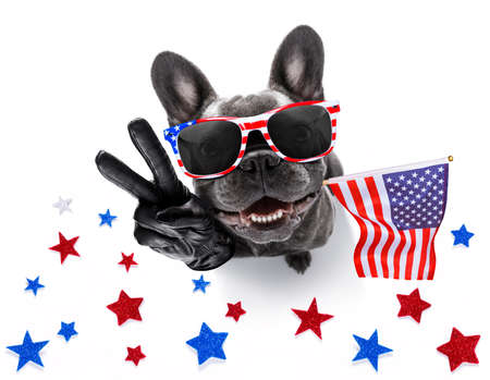 Photo pour french bulldog waving a flag of usa and victory or peace fingers on independence day 4th of july with sunglasses - image libre de droit
