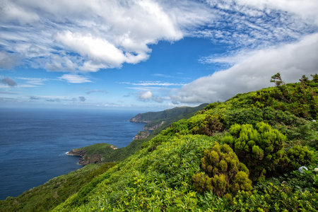 Photo pour Beautiful green coastline above the small village of Ponta Delgada on the island of Flores in the Azores. - image libre de droit