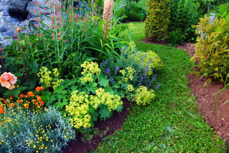 Photo pour Beautiful garden   - image libre de droit