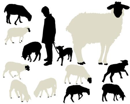 Ilustración de sheep collection - Imagen libre de derechos