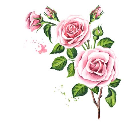 Photo pour Pink rose composition. - image libre de droit